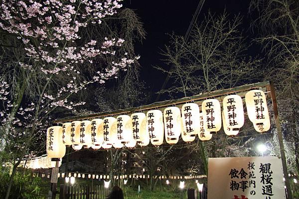 0326京都平野神社夜櫻 (36).JPG