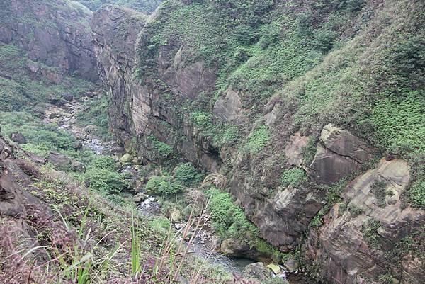 0430瑞芳小錐麓古道 (117).JPG