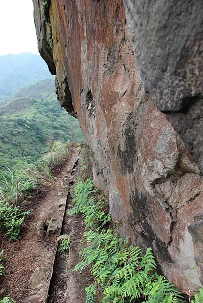 0430瑞芳小錐麓古道 (124).JPG