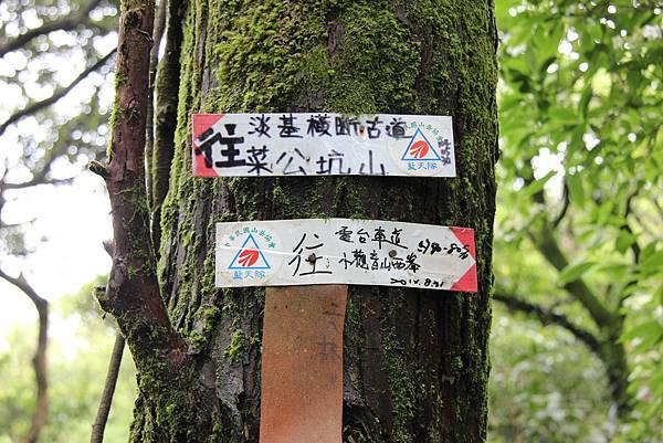 0514小觀音山西峰、小觀音山 (7).JPG