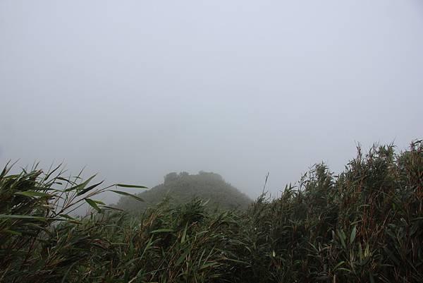 0514小觀音山西峰、小觀音山 (17).JPG