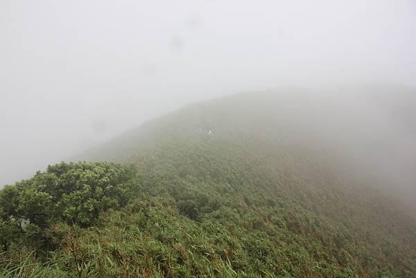0514小觀音山西峰、小觀音山 (27).JPG