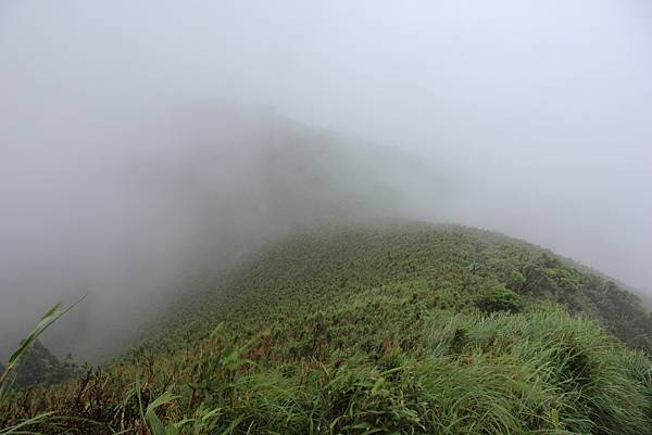 0514小觀音山西峰、小觀音山 (31).JPG