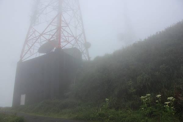 0514小觀音山西峰、小觀音山 (46).JPG
