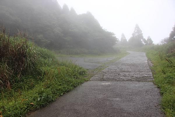 0514小觀音山西峰、小觀音山 (47).JPG