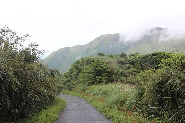 0514小觀音山西峰、小觀音山 (49).JPG