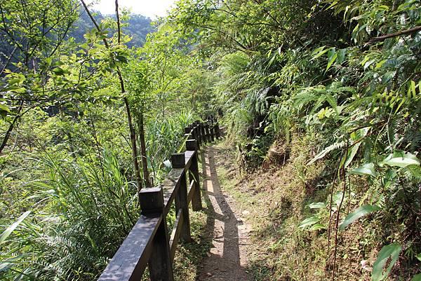 0605金瓜寮溪步道 (10).JPG