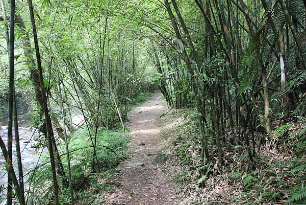 0605金瓜寮溪步道 (75).JPG