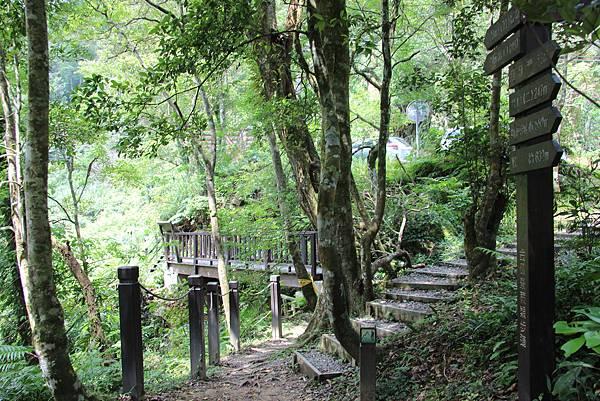 0605金瓜寮溪步道 (87).JPG