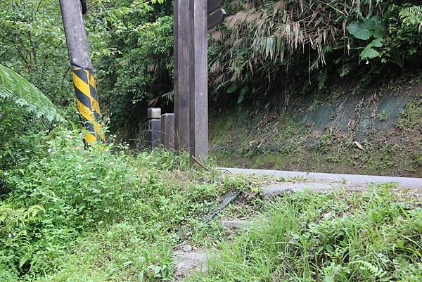 0605金瓜寮溪步道 (108).JPG