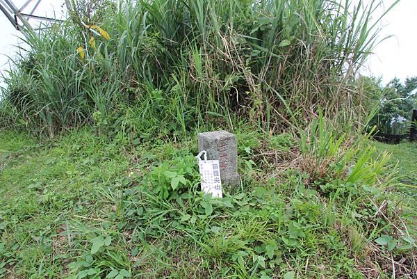 0605金瓜寮溪步道 (115).JPG