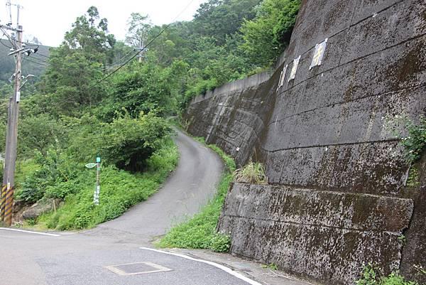0605金瓜寮溪步道 (123).JPG