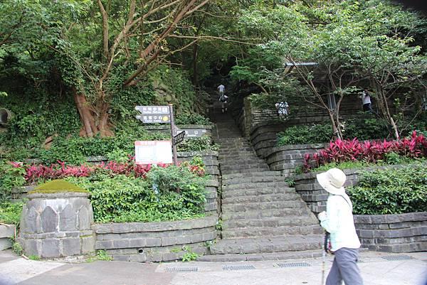 0609硬漢嶺步道 (2).JPG