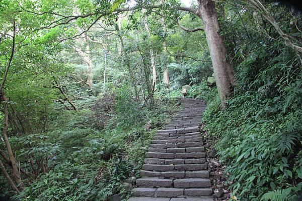 0609硬漢嶺步道 (8).JPG