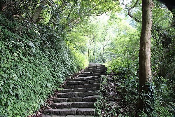 0609硬漢嶺步道 (9).JPG