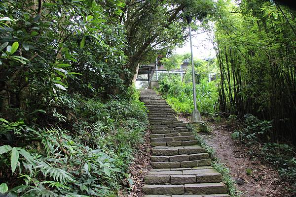 0609硬漢嶺步道 (10).JPG