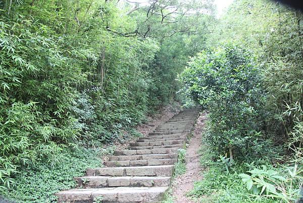 0609硬漢嶺步道 (15).JPG