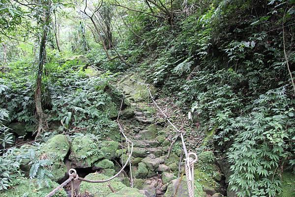 0827東勢格越嶺古道 (33).JPG
