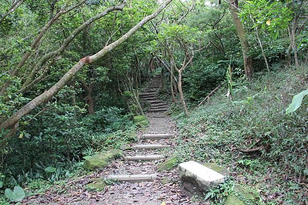 1112海興步道、大武崙山 (13).JPG