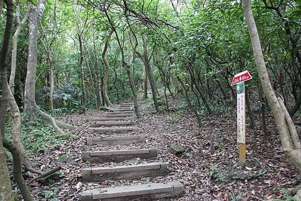 1112海興步道、大武崙山 (14).JPG