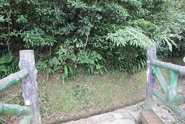 1112海興步道、大武崙山 (42).JPG