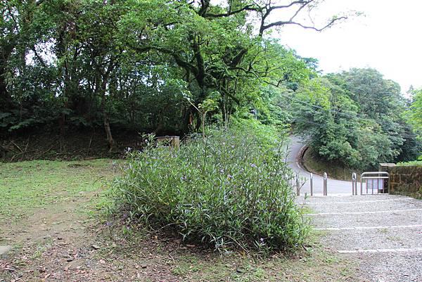 1112海興步道、大武崙山 (50).JPG