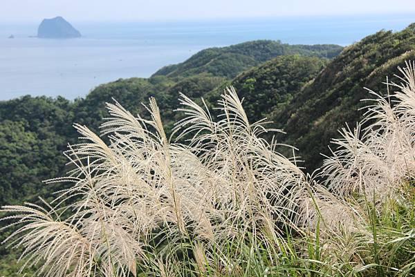 1112海興步道、大武崙山 (71).JPG