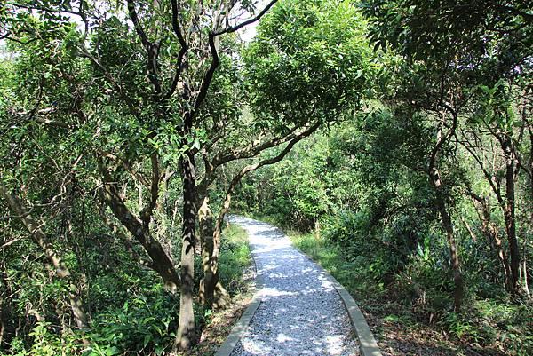 1112海興步道、大武崙山 (103).JPG