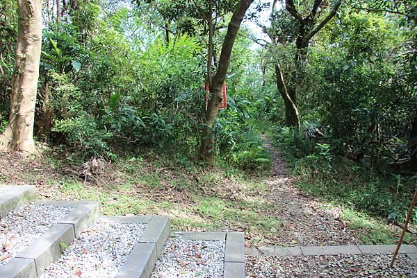 1112海興步道、大武崙山 (123).JPG
