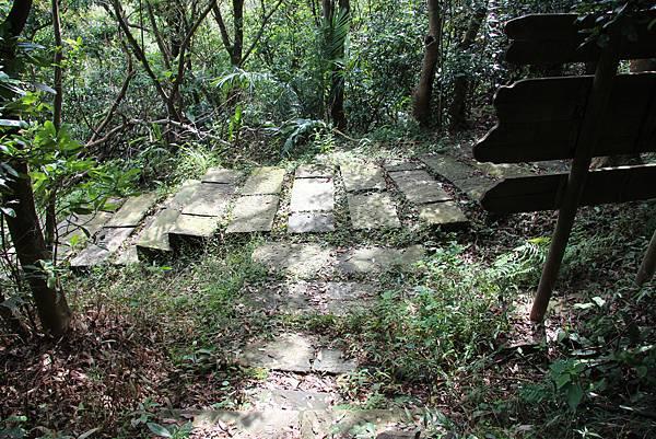1112海興步道、大武崙山 (125).JPG
