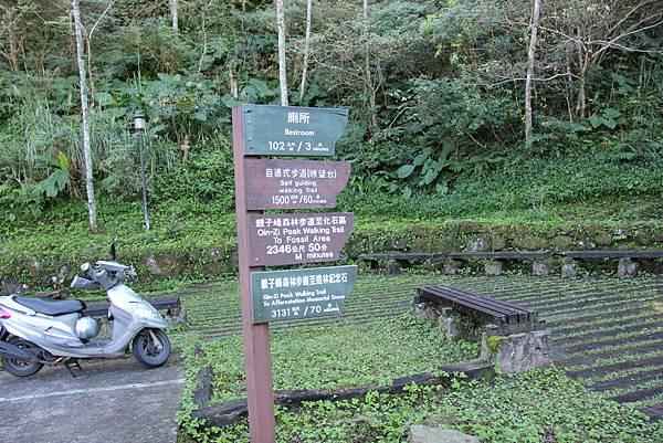 1119東眼山親子步道 (12).JPG