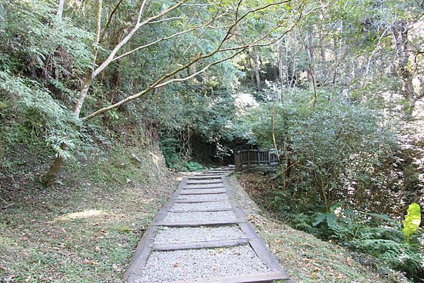1119東眼山親子步道 (17).JPG