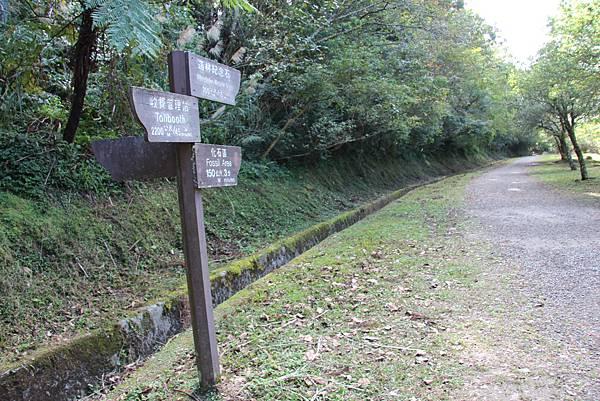 1119東眼山親子步道 (70).JPG