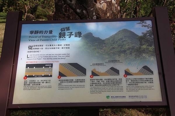 1119東眼山親子步道 (88).JPG