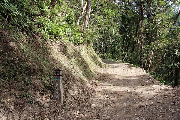 1119東眼山親子步道 (90).JPG
