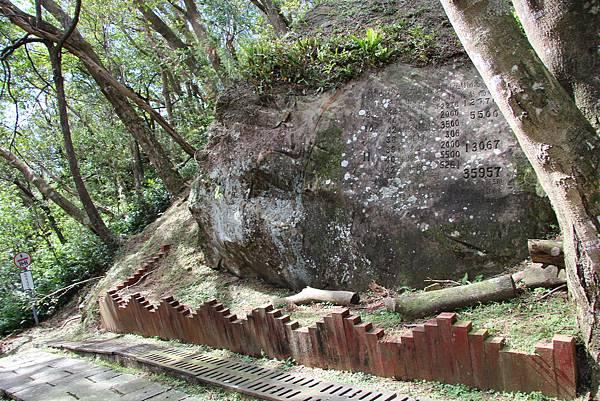 1119東眼山親子步道 (92).JPG