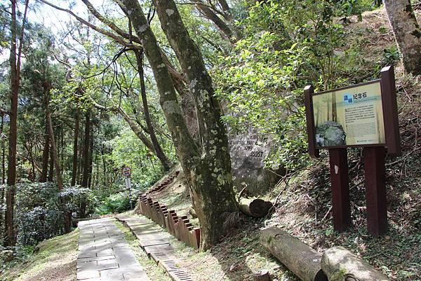 1119東眼山親子步道 (95).JPG