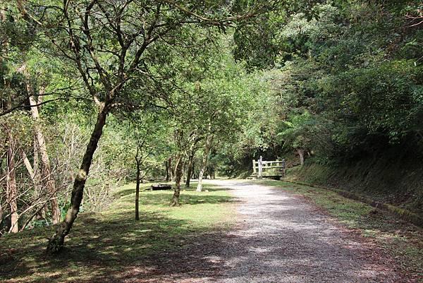 1119東眼山親子步道 (96).JPG