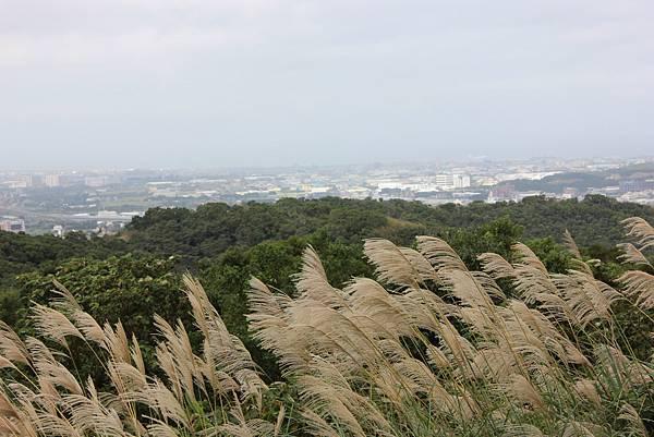 1203五酒桶山、山鼻山、六福步道 (37).JPG