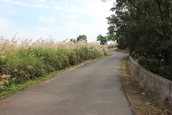 1204銅鑼天空自行車道 (57).JPG