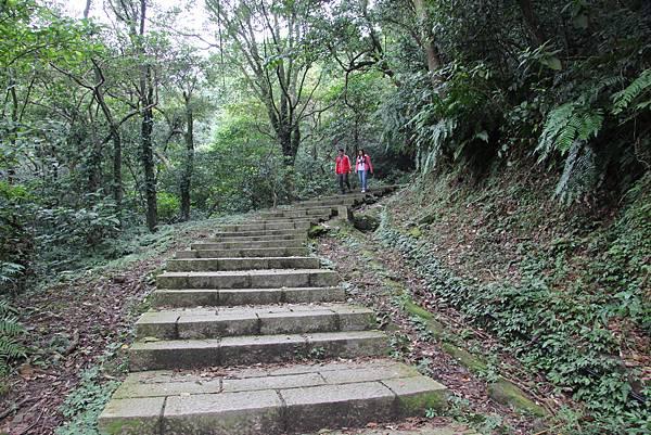 1210新山夢湖步道 (2).JPG