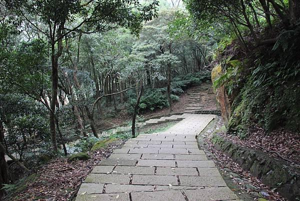 1210新山夢湖步道 (3).JPG