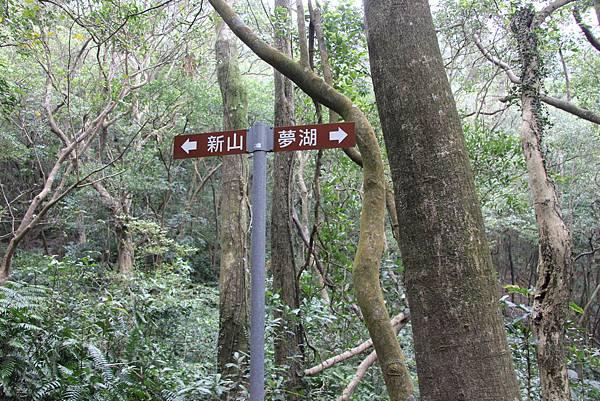 1210新山夢湖步道 (26).JPG