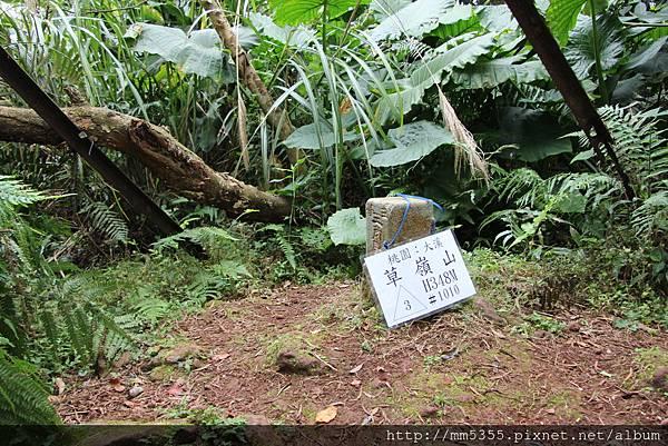 0204草嶺山 (19).JPG