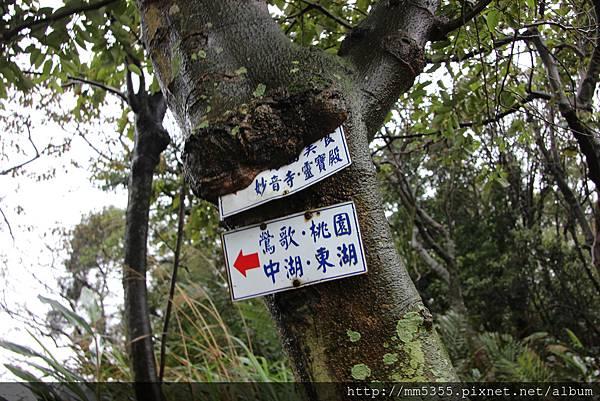 0325龜山福源山步道 (48).JPG
