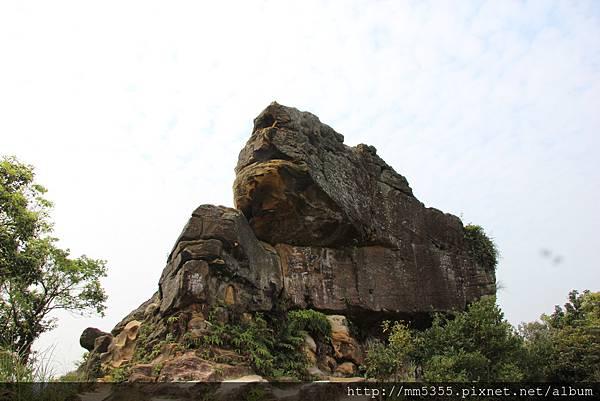 0415軍艦岩、丹鳳山繞一圈 (20).JPG