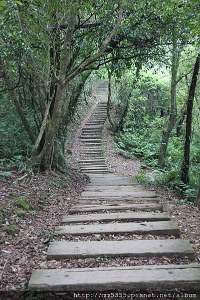 0909姜子寮山 (11).JPG