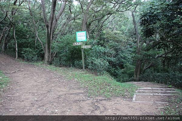 1022羊稠森林步道 (4).JPG