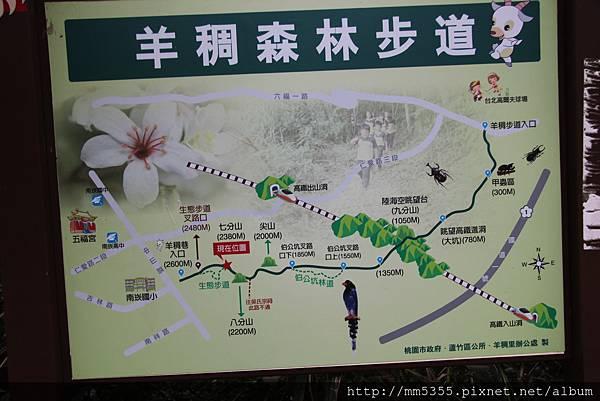 1022羊稠森林步道 (7).JPG
