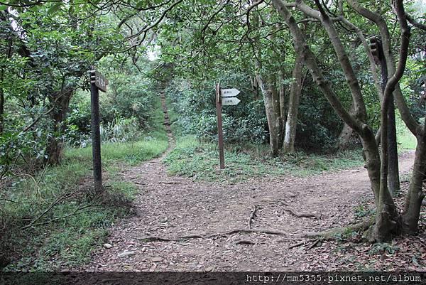 1022羊稠森林步道 (15).JPG